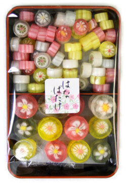 Sun Shine Candy Lunch Box HANA BATAKE (229144)